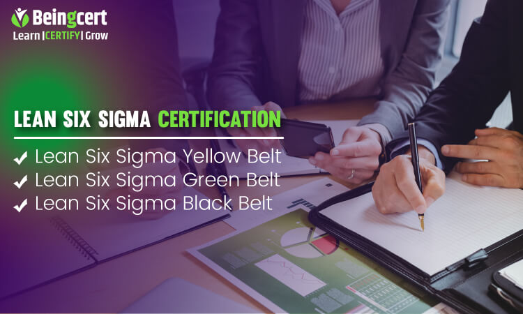 Lean Six Sigma: Learn the Lean way