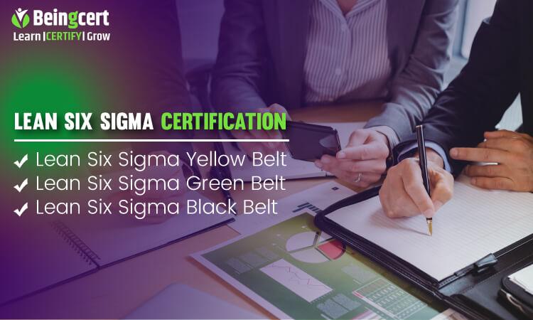 Lean Six Sigma: Learn the Lean way
